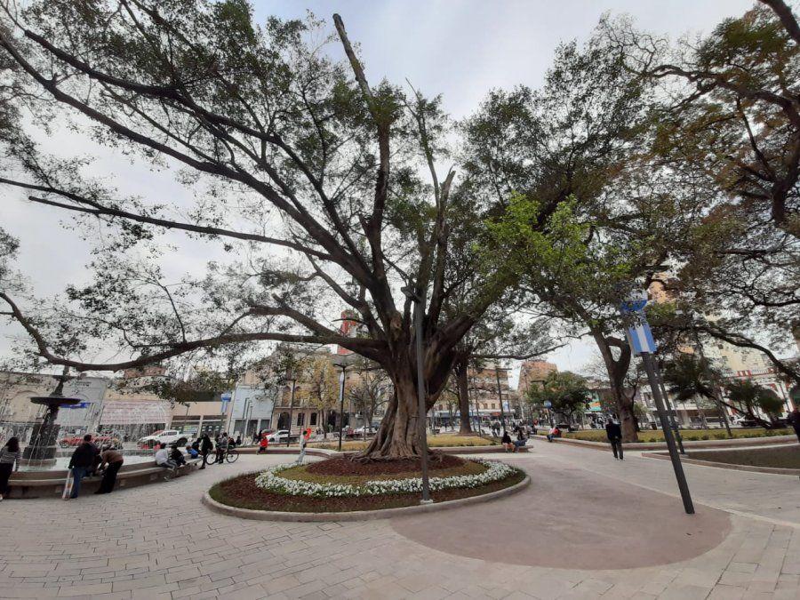 El tiempo en Tucumán: ¿qué pasará esta semana?