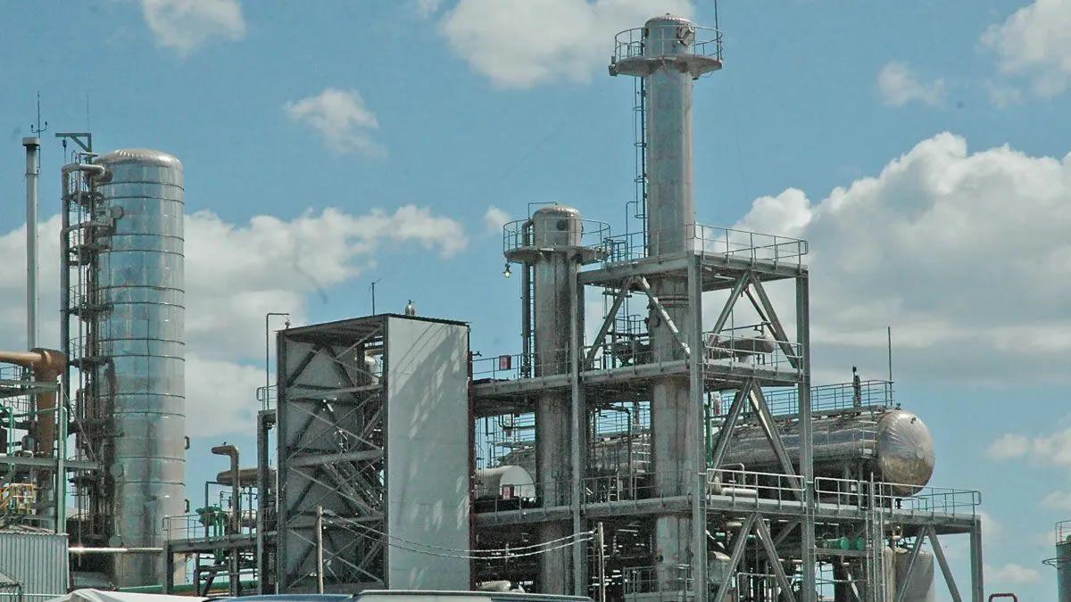Ley de Biocombustibles: conformidad por parte del sector azucarero