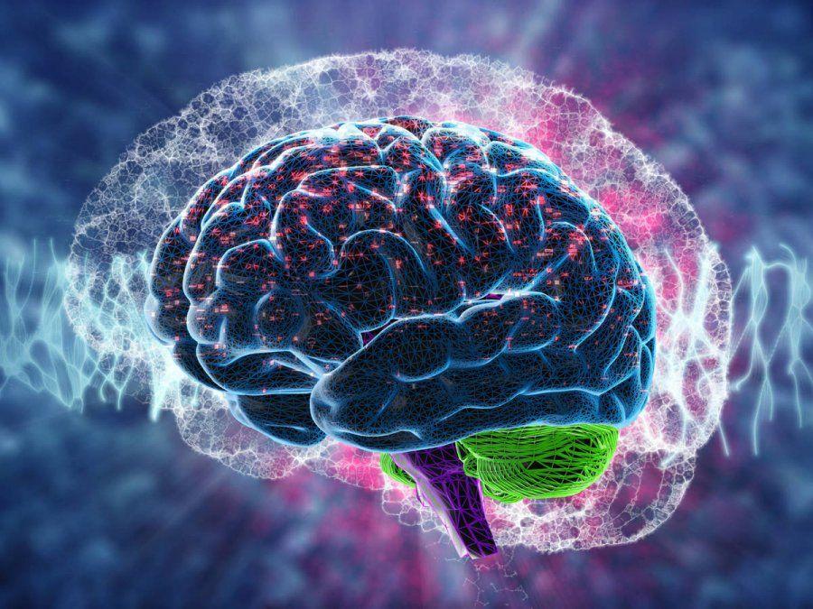 El cerebro merece cuidados y atenciones en pos de su salud.