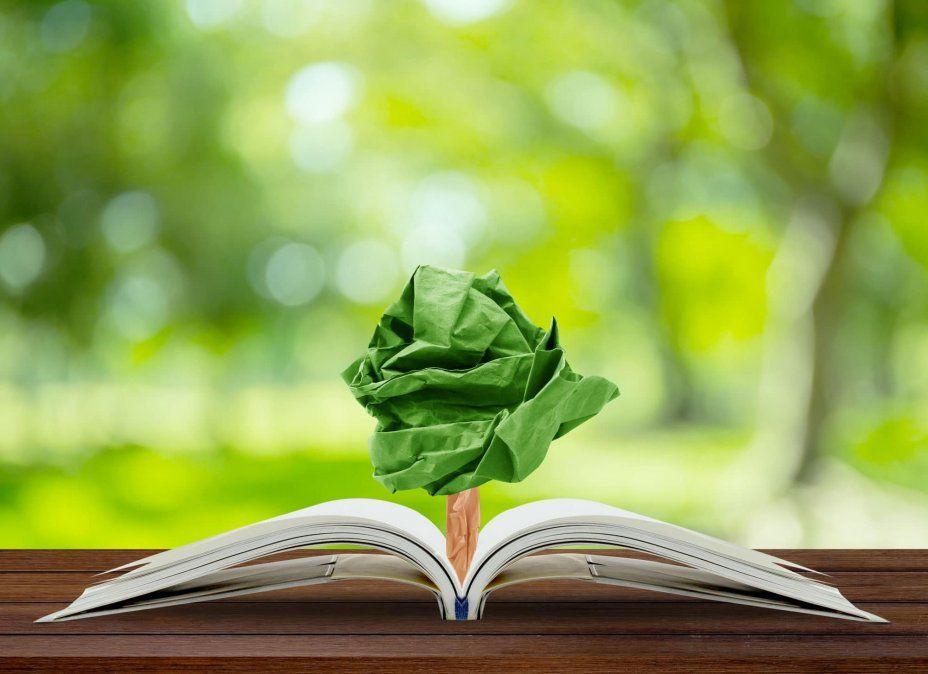 Impulsan un proyecto para insertar educación ambiental en la curricula