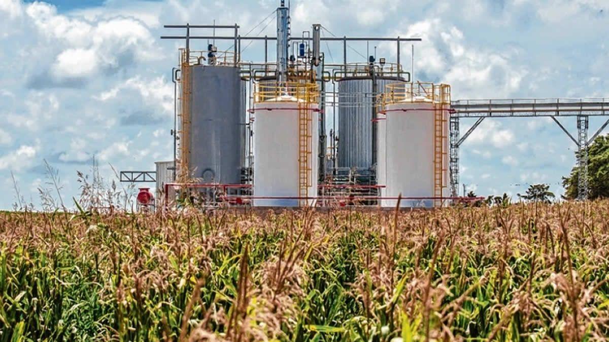 Piden el urgente tratamiento del proyecto de Ley de biocombustibles