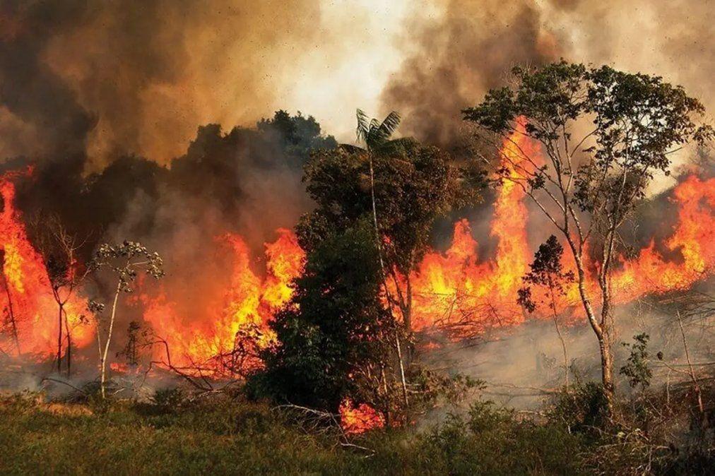 Incendios: Salta y Jujuy mantienen focos activos