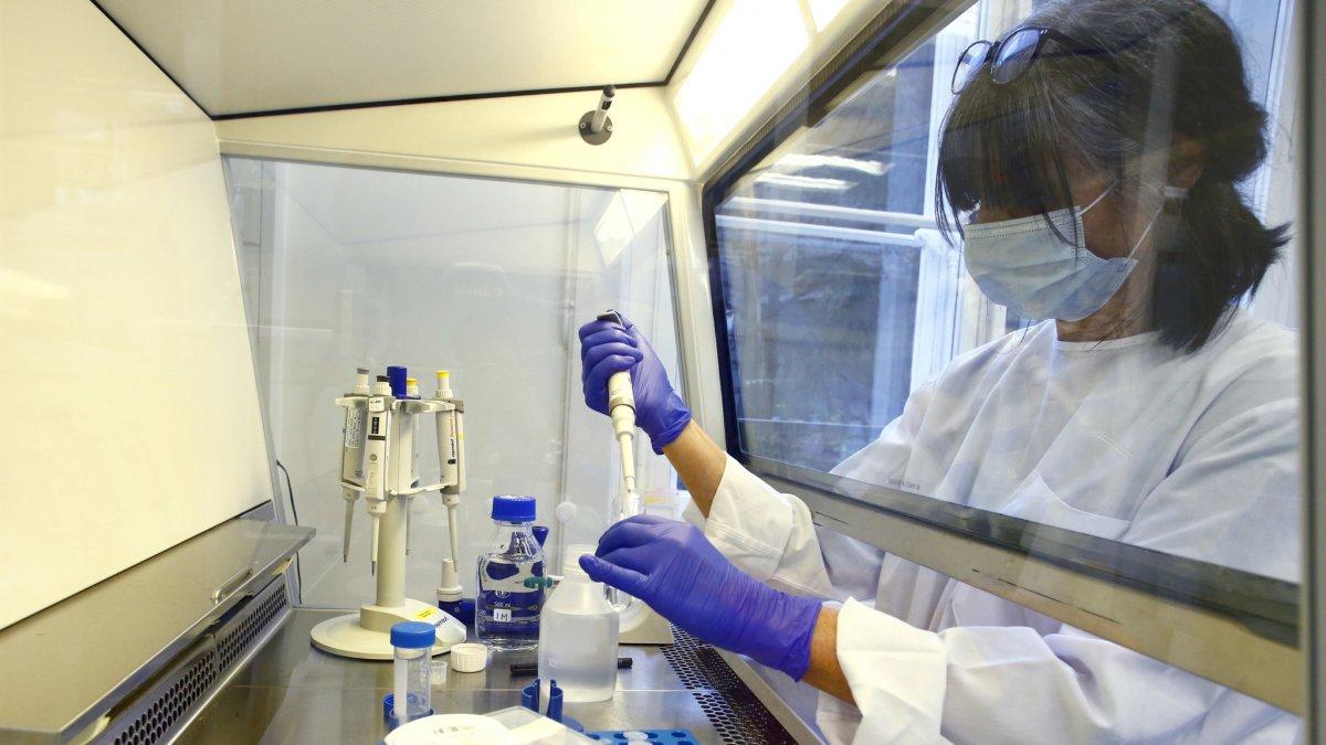 Coronavirus: fijan pautas para la adquisición de la vacuna