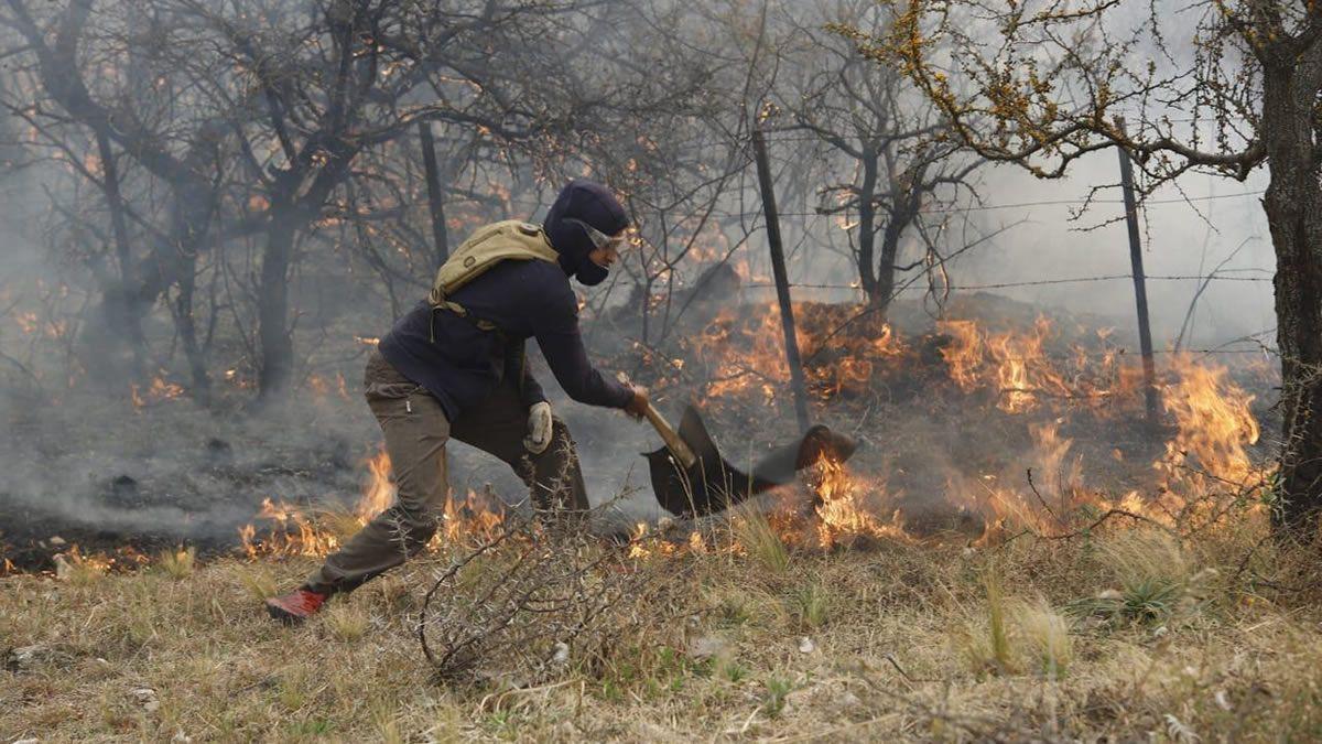 Diputados: sancionan ley que prohíbe la venta de campos incendiados