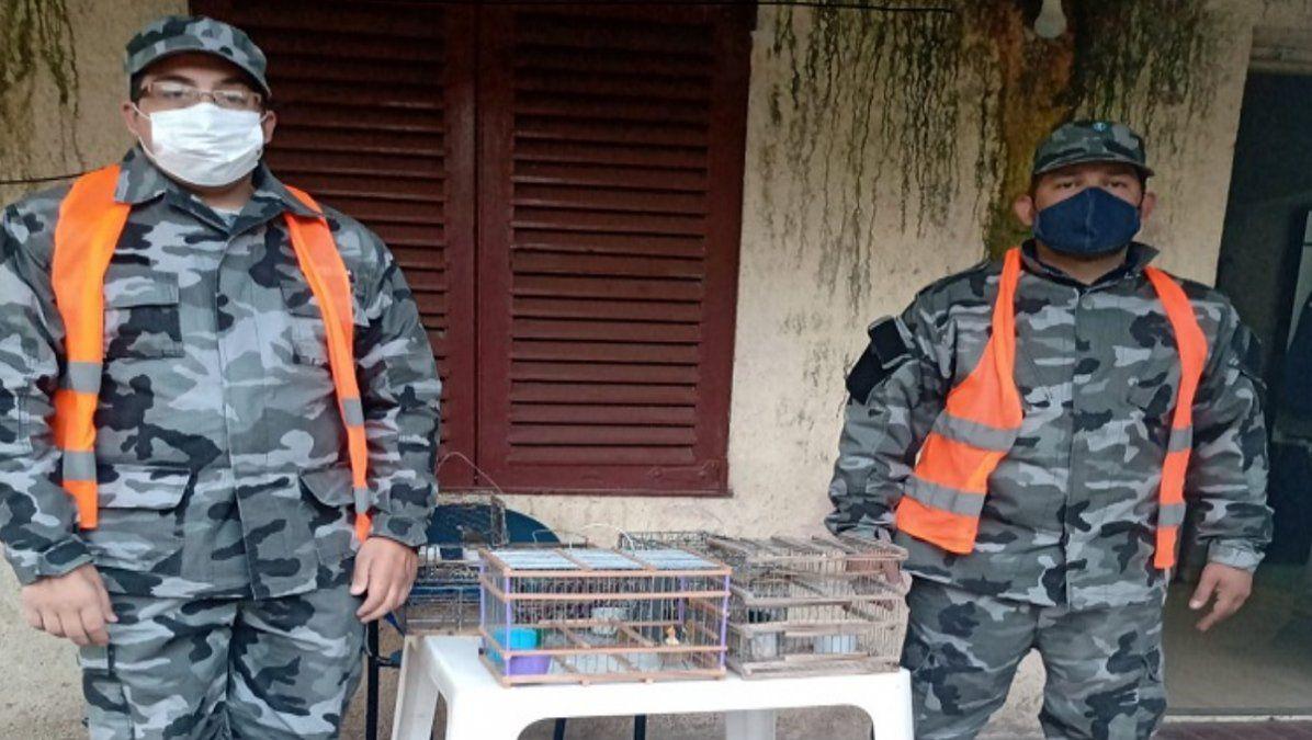 Secuestraron animales equinos y aves en diversos operativos.