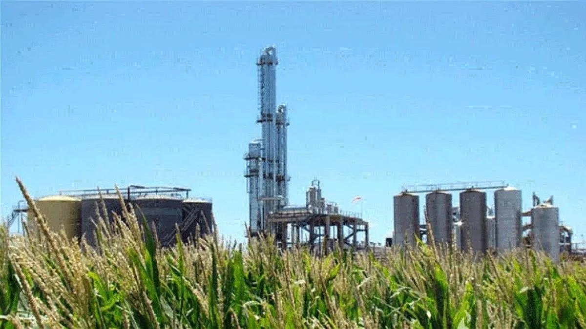 Biocombustibles: Los azucareros aprueban el proyecto. Foto: marcainformativa.com