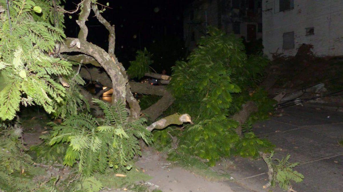 La Capital, Tafí Viejo y Yerba Buena, las zonas más afectadas por fuertes vientos