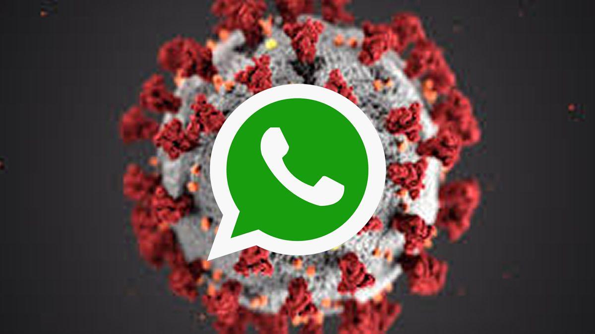 Coronavirus en Argentina: lanzan un línea de ayuda en WhatsApp