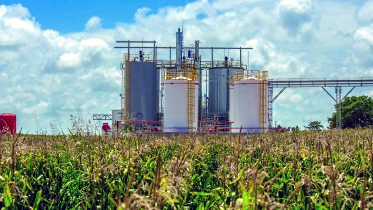 Biocombustibles: llegó el respiro esperado por el sector