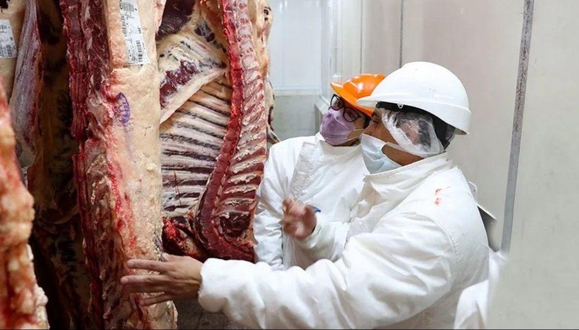 Bajó la exportación de carne en junio y subió en el semestre