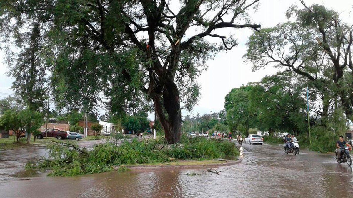 Las tormentas causaron destrozos en el sur de la provincia